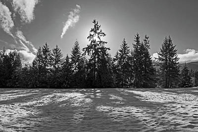 Photograph - Winter Landscape - 365-317 by Inge Riis McDonald