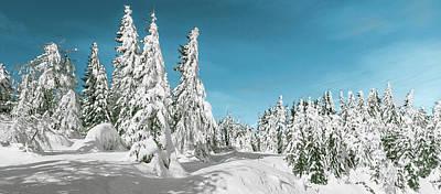 Snow Covered Trees Digital Art - Winter Landscape by Brett Pfister