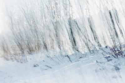 Photograph - Winter Landscape by Chris McPhee