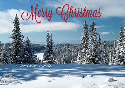 Photograph - Winter Landscape Christmas Card by Roy Kastning