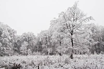 Winter Landscape Art Print by Gabor Pozsgai