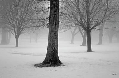 Photograph - Winter Landscape II by Dave Gordon