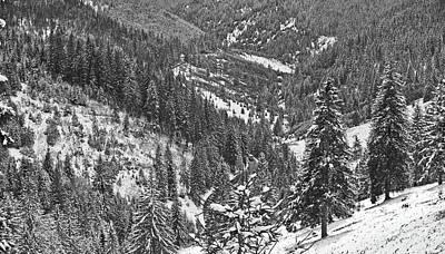 Winter Landscape In Giurgeu Mountains Art Print by Gabriela Insuratelu