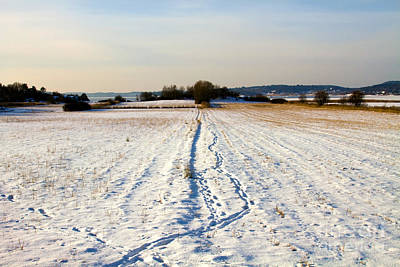 Winter Landscapes Photograph - Winter Landscape by Lutz Baar