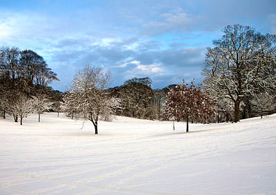 Winter Landscape Art Print by Svetlana Sewell