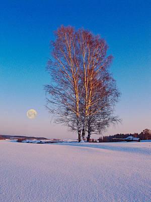 Photograph - Winter Landscape by Vladimir Kholostykh
