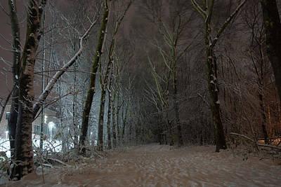 Photograph - Winter Lane by Erik Tanghe