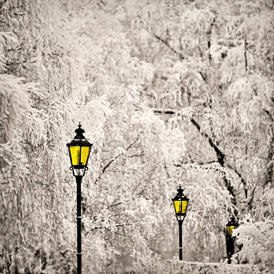Photograph - Winter Lanterns by Ari Salmela