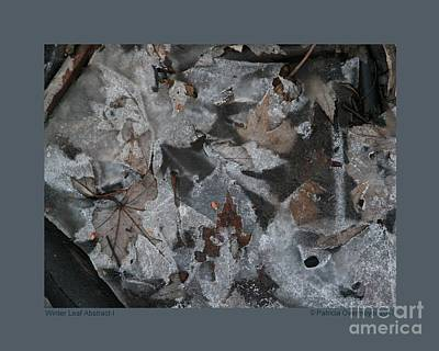 Photograph - Winter Leaf Abstract-i by Patricia Overmoyer