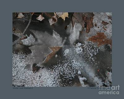 Photograph - Winter Leaf Abstract-ii by Patricia Overmoyer