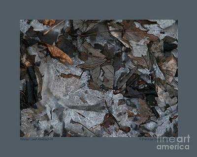 Photograph - Winter Leaf Abstract-iii by Patricia Overmoyer