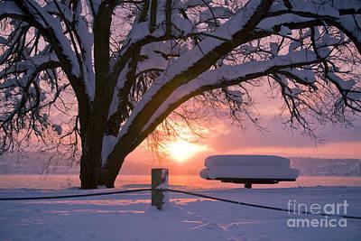 Photograph - Winter Light by Idaho Scenic Images Linda Lantzy