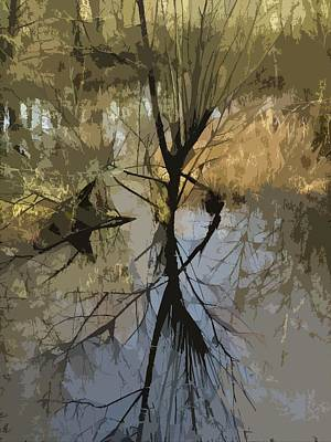 Photograph - Winter Light Reflection by I'ina Van Lawick
