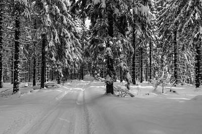 Photograph - Winter Lines, Harz by Andreas Levi