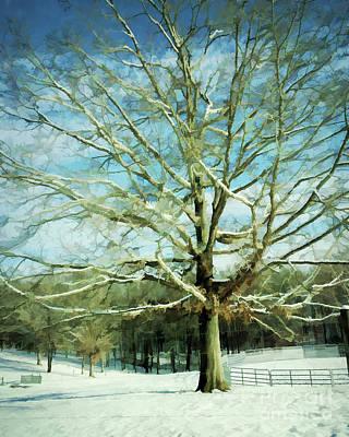 Photograph - Winter Magic   by Kerri Farley
