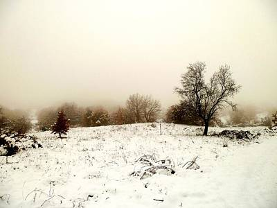 Winter Magic Landscape Art Print by Donatella Muggianu