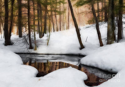 Photograph - Winter Magic by Sharon Seaward