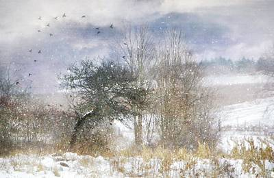 Photograph - Winter Magic by Stephanie Calhoun