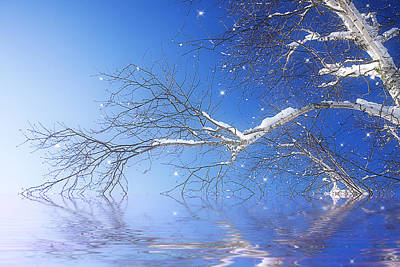 Winter Magic Art Print by Trudy Wilkerson