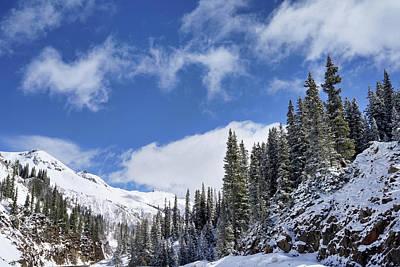 Photograph - Winter Majesty by Leda Robertson