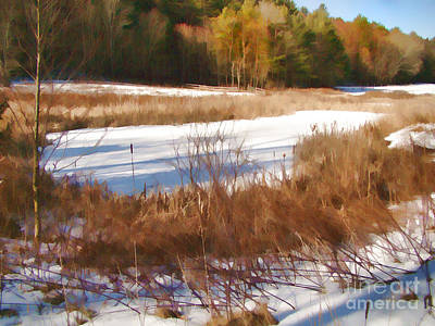 Winter Marsh Art Print by Betsy Zimmerli