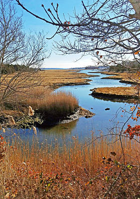 Photograph - Winter Marsh by Paul and Janice Russell