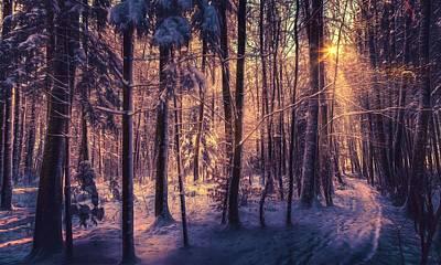 Digital Art - Winter by Maye Loeser