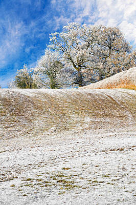 Hoar Frost Photograph - Winter by Meirion Matthias