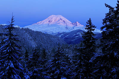 Photograph - Winter Morning With Mount Rainier 2 by Lynn Hopwood