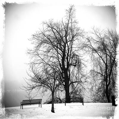 Photograph - Winter Mist- As4000001 by Daniel Dempster