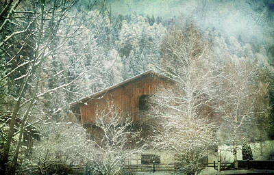 Photograph - Winter Mood by Vittorio Chiampan