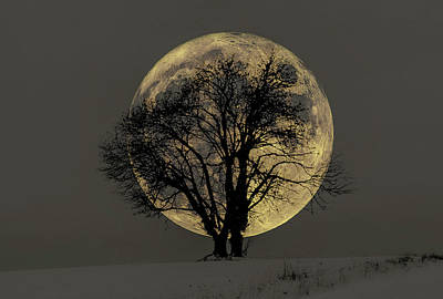Tapestry - Textile - Winter Moon by Dennis Bucklin