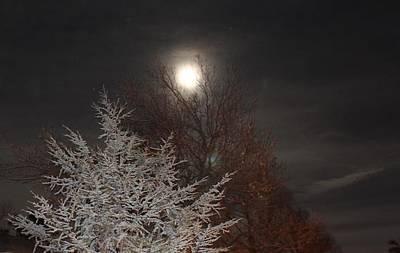 Winter Moon Art Print by John Adams