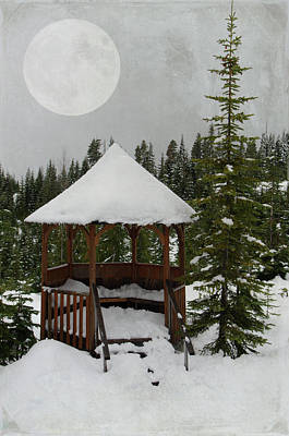 Photograph - Winter Moon by Marilyn Wilson