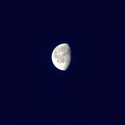 Photograph - Winter Moon by  Newwwman