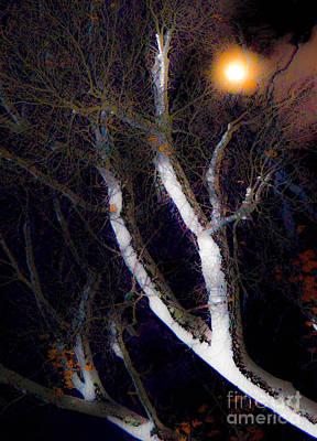 Winter Moon Art Print by Sabrina Ramina