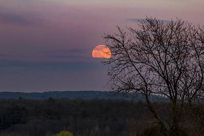 Photograph - Winter Moonrise by Sven Kielhorn
