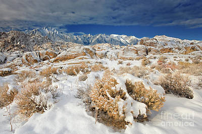 Photograph - Winter Morning Alabama Hills Eastern Sierras California by Dave Welling
