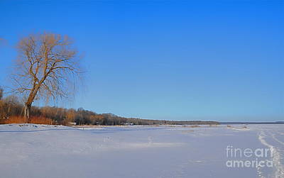 Photograph - Winter Morning Canada by Louise Fahy