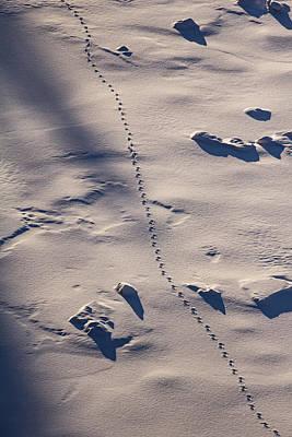 Winter Morning Hike At Kakabeka Falls 7 Print by Jakub Sisak