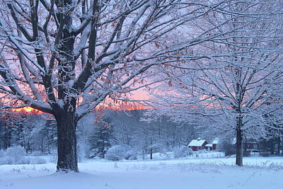 Photograph - Winter Morning by John Burk