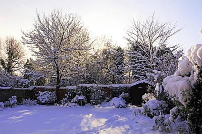 Photograph - Winter Morning by Tony Murtagh