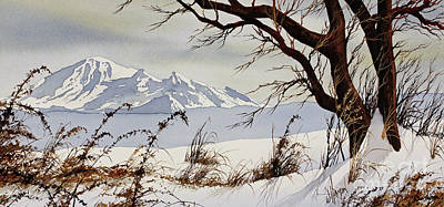 Williamson County Painting - Winter Mountain Vista by James Williamson