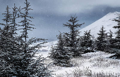 Photograph - Winter Mountains Landscape by Anna Om