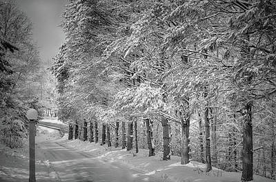 Photograph - Winter New England Style by Tricia Marchlik