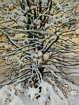 Painting - Winter Oak by Carol Phenix
