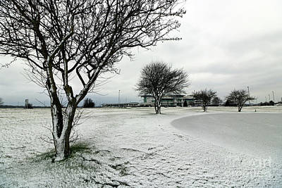 Photograph - Winter On Epsom Downs Surrey by Julia Gavin