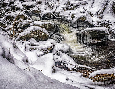 Photograph - Winter On Kitchen Creek by Nick Zelinsky