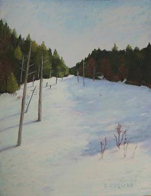 Winter On Moose Pond Art Print