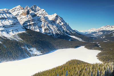 Photograph - Winter On Peyto Lake by Michael Blanchette